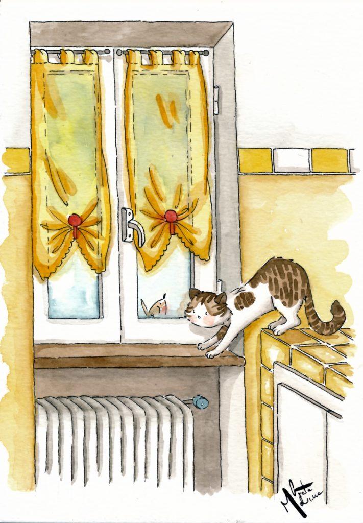 La gattina e il pettirosso